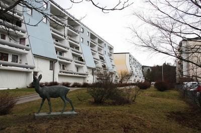Deer at Vestli_MEDIUM